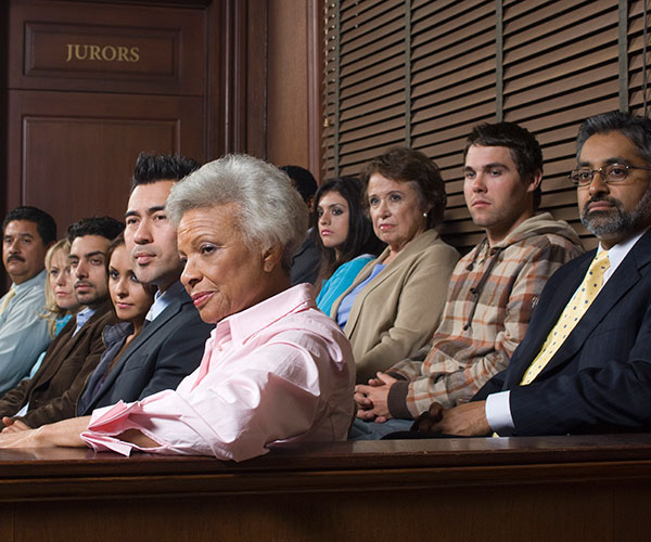 Shadow Jury Service